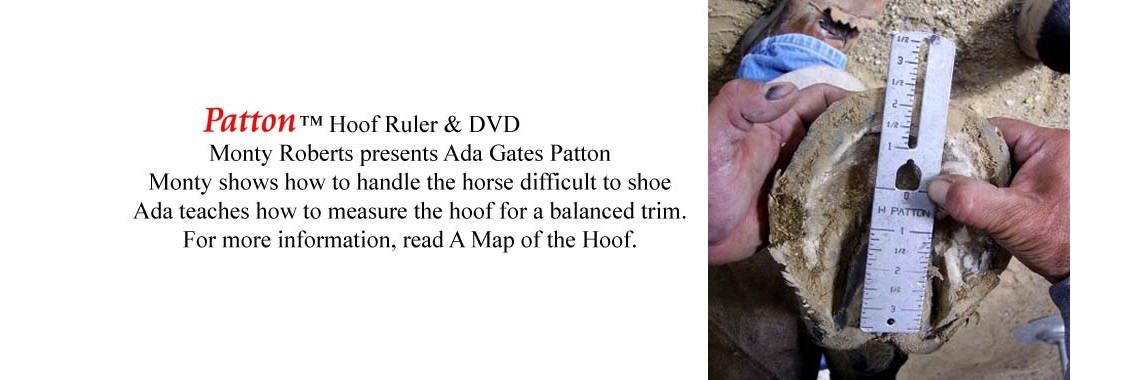 hoof ruler kit